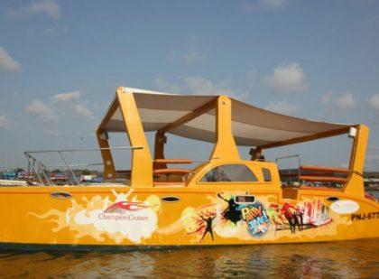 Catamaran Cruiser Goa